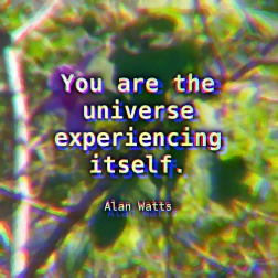 Alan-Watts-You-are-the-universe