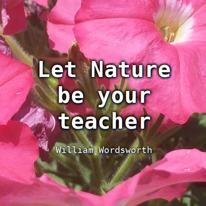 """Let Nature be your teacher"" William Wordsworth"
