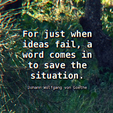 Goethe-Word-saves-the-day