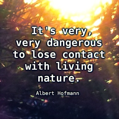 It's very, very dangerous to lose contact with living Nature ― Albert Hoffman