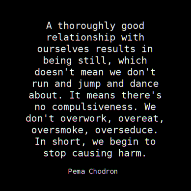 A thoroughly good relationship with ourselves results in being still, which doesn't mean we don't run and jump and dance about. It means there's no compulsiveness. We don't overwork, overeat, oversmoke, overseduce. In short, we begin to stop causing harm. ― Pema Chodron