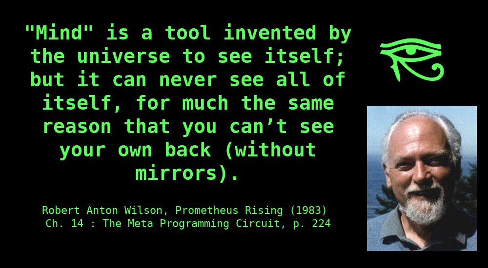 """""""Mind"""" is a tool invented by the universe to see itself; but it can never see all of itself, for much the same reason that you can't see your own back (without mirrors). ~ Robert Anton Wilson"""